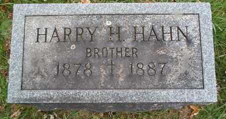 HAHN, HARRY H - Greene County, New York | HARRY H HAHN - New York Gravestone Photos
