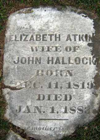 ATKIN HALLOCK, ELIZABETH - Greene County, New York | ELIZABETH ATKIN HALLOCK - New York Gravestone Photos