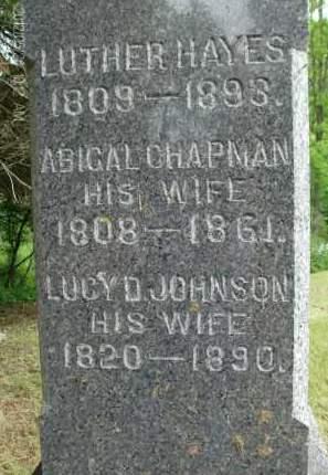 JOHNSON, LUCY D - Greene County, New York | LUCY D JOHNSON - New York Gravestone Photos