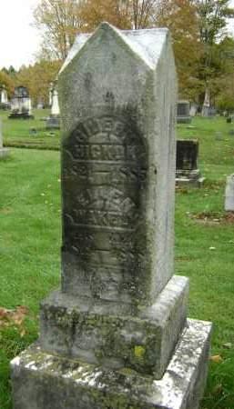 WAKELY, ELLEN - Greene County, New York   ELLEN WAKELY - New York Gravestone Photos