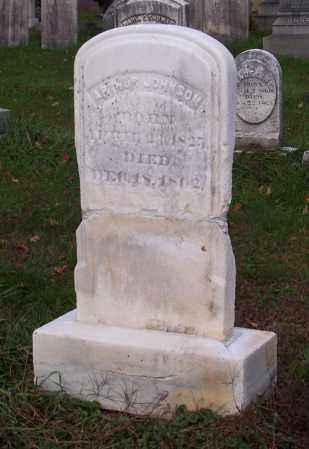 JOHNSON, ARTHUR - Greene County, New York | ARTHUR JOHNSON - New York Gravestone Photos