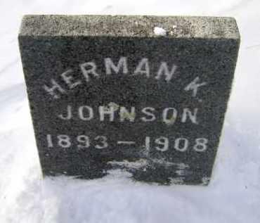 JOHNSON, HERMAN K - Greene County, New York | HERMAN K JOHNSON - New York Gravestone Photos