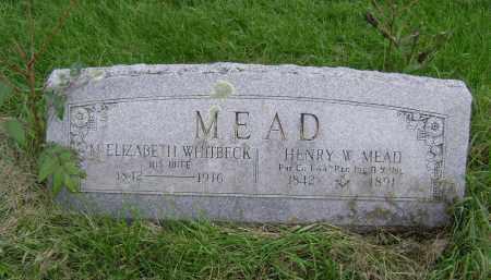 MEAD, HENRY W - Greene County, New York | HENRY W MEAD - New York Gravestone Photos
