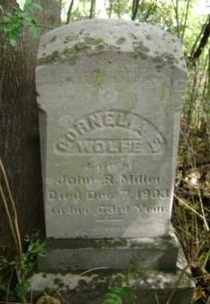 WOLFE, CORNELIA E - Greene County, New York | CORNELIA E WOLFE - New York Gravestone Photos