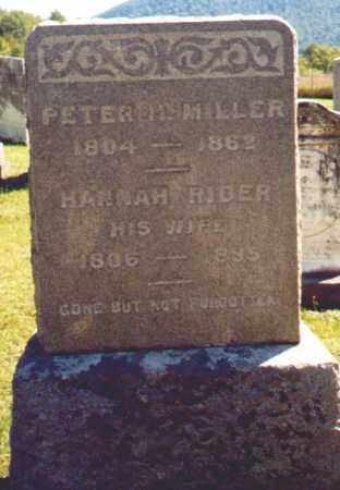 MILLER, PETER - Greene County, New York | PETER MILLER - New York Gravestone Photos