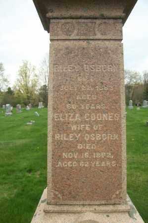 OSBORN, ELIZA - Greene County, New York | ELIZA OSBORN - New York Gravestone Photos