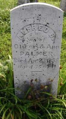 PALMER, ALFRED B - Greene County, New York   ALFRED B PALMER - New York Gravestone Photos