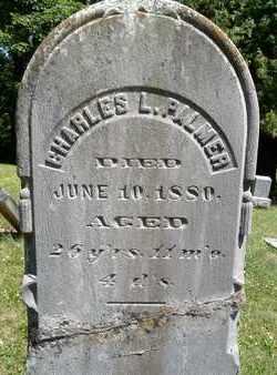 PALMER, CHARLES L - Greene County, New York | CHARLES L PALMER - New York Gravestone Photos