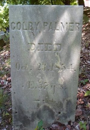 PALMER, COLBY - Greene County, New York | COLBY PALMER - New York Gravestone Photos