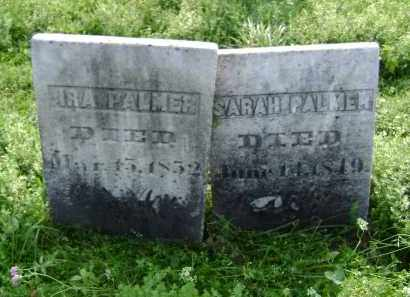 PALMER, IRA - Greene County, New York | IRA PALMER - New York Gravestone Photos