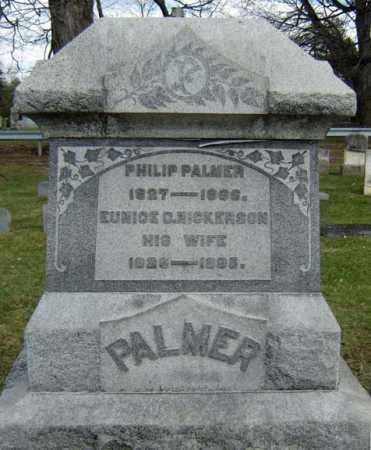 PALMER, EUNICE D - Greene County, New York | EUNICE D PALMER - New York Gravestone Photos