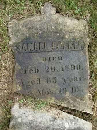 PALMER, SAMUEL - Greene County, New York | SAMUEL PALMER - New York Gravestone Photos