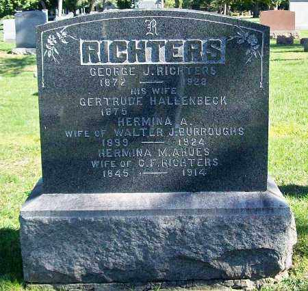 RICHTERS, GEORGE J. - Greene County, New York | GEORGE J. RICHTERS - New York Gravestone Photos