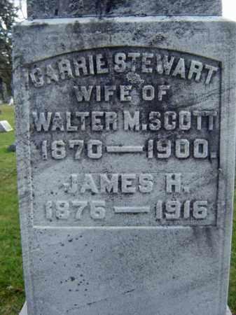 STEWARD, JAMES H - Greene County, New York | JAMES H STEWARD - New York Gravestone Photos