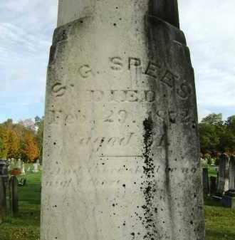 SPEES, S. G. - Greene County, New York | S. G. SPEES - New York Gravestone Photos