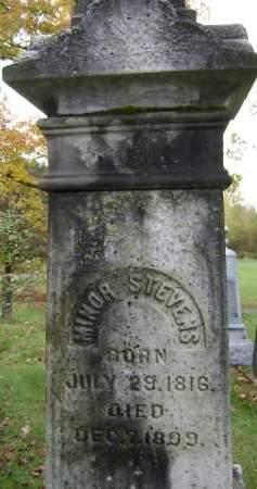 STEVENS, MINOR - Greene County, New York | MINOR STEVENS - New York Gravestone Photos