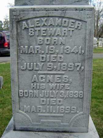 STEWART, AGNES - Greene County, New York | AGNES STEWART - New York Gravestone Photos