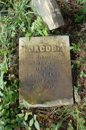 TOMPKINS, JACOB - Greene County, New York | JACOB TOMPKINS - New York Gravestone Photos