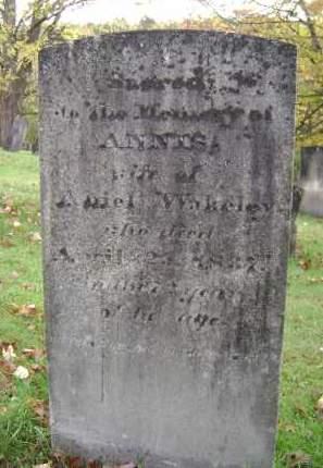 WAKELEY, ANNIS - Greene County, New York | ANNIS WAKELEY - New York Gravestone Photos