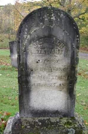 WAKELEY, JANE ANN - Greene County, New York | JANE ANN WAKELEY - New York Gravestone Photos
