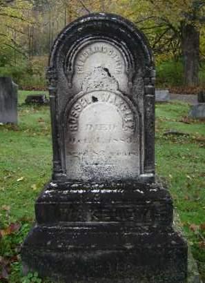 WAKELEY, RUSSELL - Greene County, New York | RUSSELL WAKELEY - New York Gravestone Photos