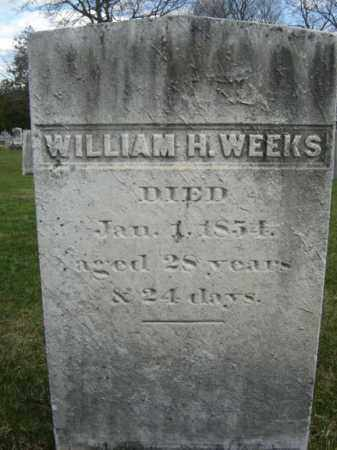 WEEKS, WILLIAM H - Greene County, New York | WILLIAM H WEEKS - New York Gravestone Photos