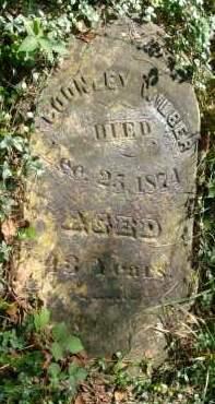 WILBER, COONLEY - Greene County, New York   COONLEY WILBER - New York Gravestone Photos
