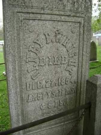 WRIGHT, OLNEY F - Greene County, New York | OLNEY F WRIGHT - New York Gravestone Photos