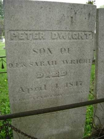 WRIGHT, PETER DWIGHT - Greene County, New York | PETER DWIGHT WRIGHT - New York Gravestone Photos