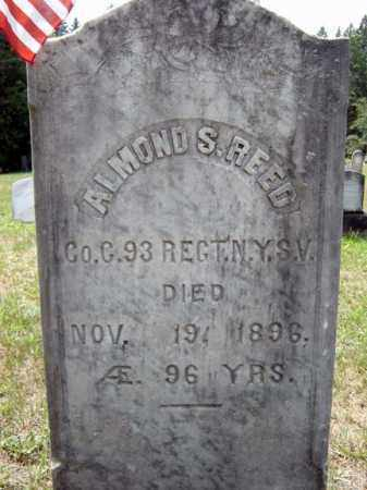 REED, ALMOND S - Hamilton County, New York | ALMOND S REED - New York Gravestone Photos