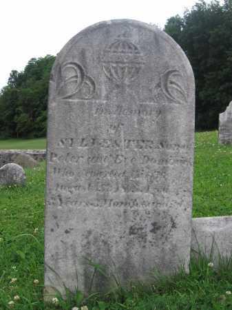 DOMINICK, SYLVESTER - Herkimer County, New York   SYLVESTER DOMINICK - New York Gravestone Photos