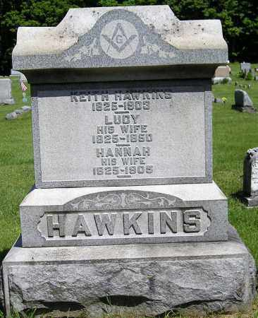 HAWKINS, LUCY - Herkimer County, New York | LUCY HAWKINS - New York Gravestone Photos