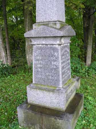 INGHAM, WILLIARD A - Herkimer County, New York | WILLIARD A INGHAM - New York Gravestone Photos