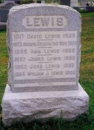 LEWIS, ANN - Herkimer County, New York | ANN LEWIS - New York Gravestone Photos
