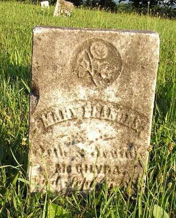 MCGILVRA, MARY FRANCIS - Herkimer County, New York   MARY FRANCIS MCGILVRA - New York Gravestone Photos