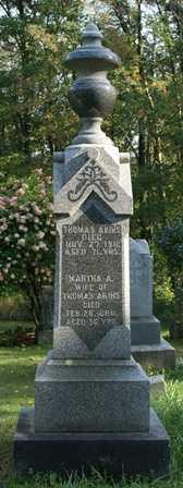 AKINS, MARTHA A. - Lewis County, New York | MARTHA A. AKINS - New York Gravestone Photos