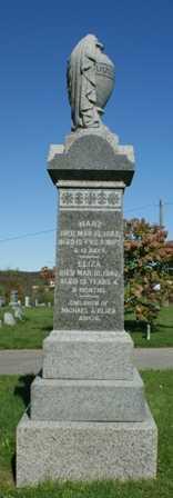 ANKIN, MARY - Lewis County, New York   MARY ANKIN - New York Gravestone Photos