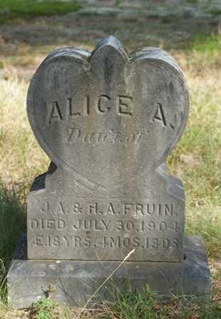 FRUIN, ALICE A. - Lewis County, New York | ALICE A. FRUIN - New York Gravestone Photos
