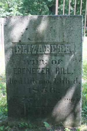 HILL, ELIZABETH - Lewis County, New York | ELIZABETH HILL - New York Gravestone Photos