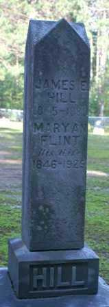 HILL, MARY AN - Lewis County, New York | MARY AN HILL - New York Gravestone Photos