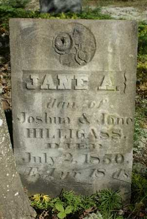 HILLIGASS, JANE A. - Lewis County, New York | JANE A. HILLIGASS - New York Gravestone Photos