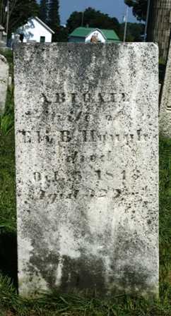 ROGERS, ABIGAIL - Lewis County, New York | ABIGAIL ROGERS - New York Gravestone Photos