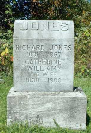 WILLIAMS, CATHERINE - Lewis County, New York   CATHERINE WILLIAMS - New York Gravestone Photos