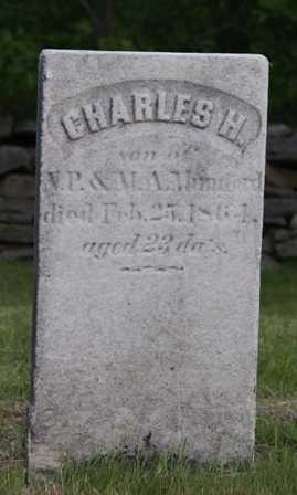 MUMFORD, CHARLES H. - Lewis County, New York | CHARLES H. MUMFORD - New York Gravestone Photos