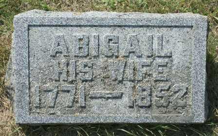 NYE, ABIGAIL - Lewis County, New York | ABIGAIL NYE - New York Gravestone Photos