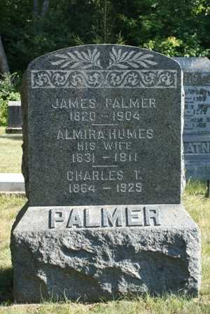 PALMER, CHARLES T. - Lewis County, New York | CHARLES T. PALMER - New York Gravestone Photos