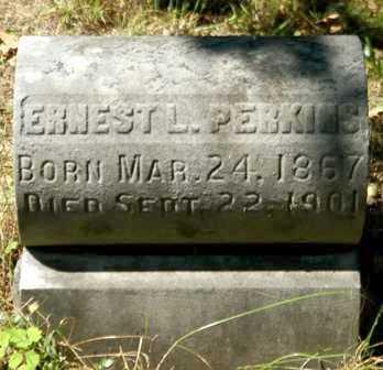 PERKINS, ERNEST L. - Lewis County, New York | ERNEST L. PERKINS - New York Gravestone Photos