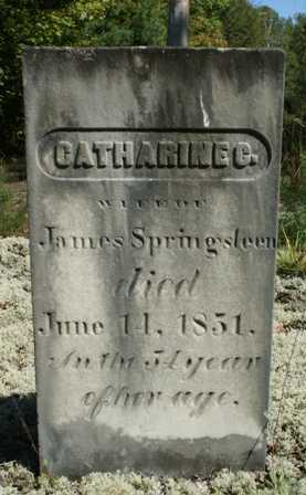 SPRINGSTEEN, CATHARINE - Lewis County, New York | CATHARINE SPRINGSTEEN - New York Gravestone Photos