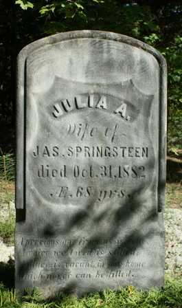 SPRINGSTEEN, JULIA A. - Lewis County, New York | JULIA A. SPRINGSTEEN - New York Gravestone Photos