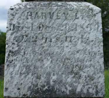STEPHENS, HARVEY L. - Lewis County, New York | HARVEY L. STEPHENS - New York Gravestone Photos